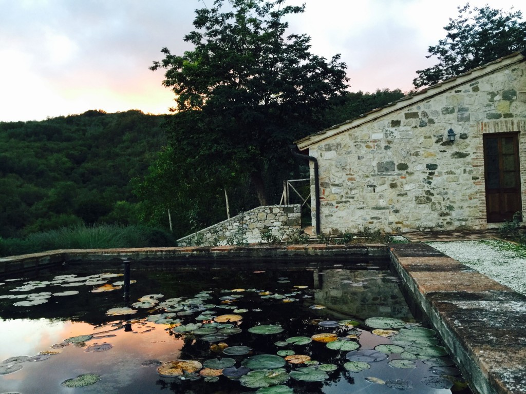 Glowing Sky at San Fedele reflected in the lily pond